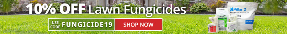 Save 10% Off Lawn Fungicides