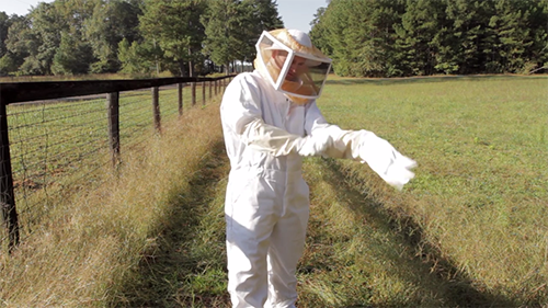 Man putting on bee suit