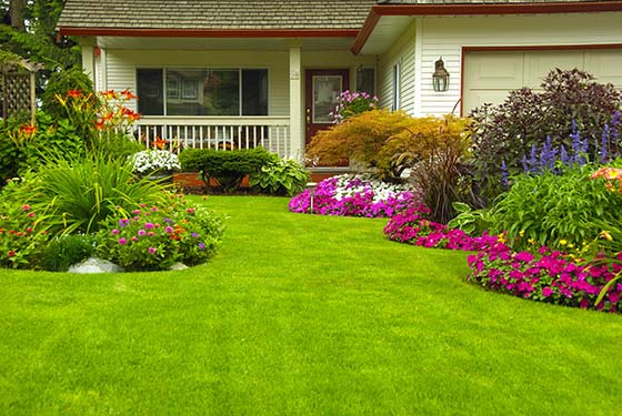 Image of a house with a healthy lawn and flower beds