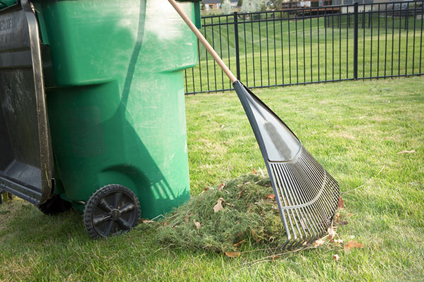 Image showing a garbage can with a rake and lawn clippings nearby