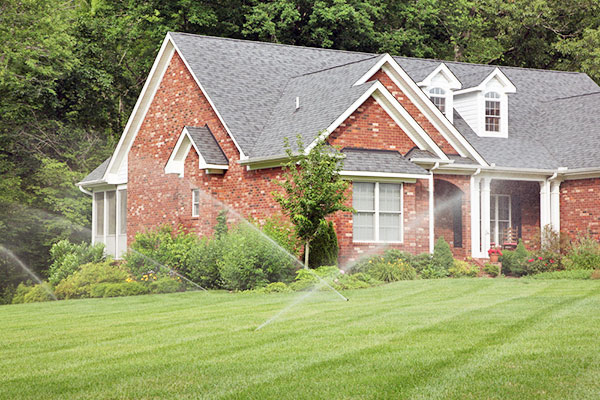 Image of a healthy lawn watered by sprinklers