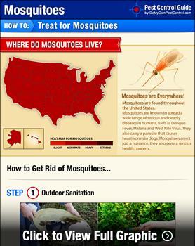Mosquito Treatment Infographic
