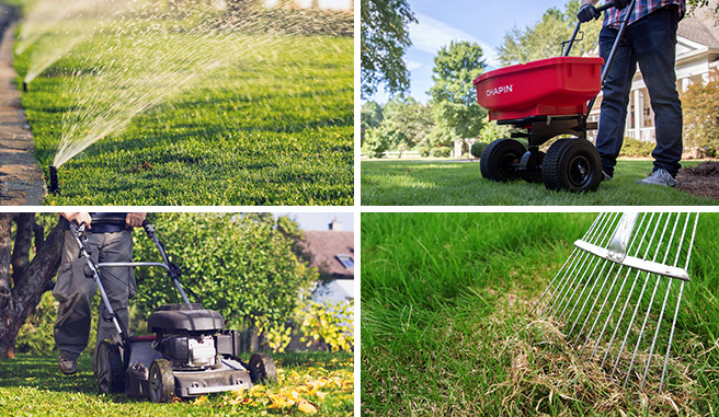 Image montage showing the best practices when caring for your lawn