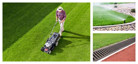 Image montage showing healthy lawn practices