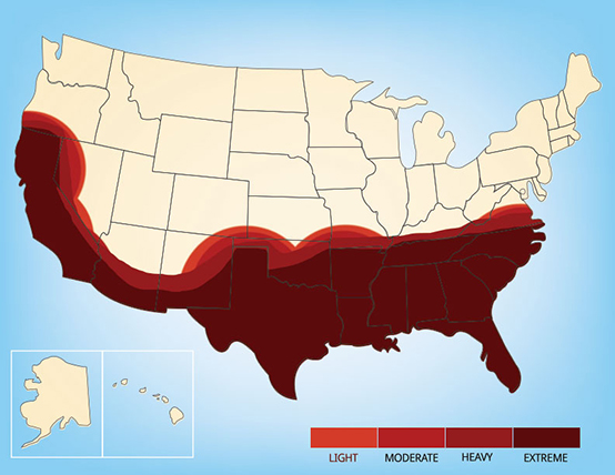 Graphic showing a range map for the chinch bug in the United States