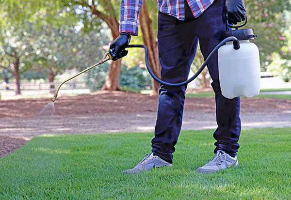 Image of man spraying lawn with herbicide
