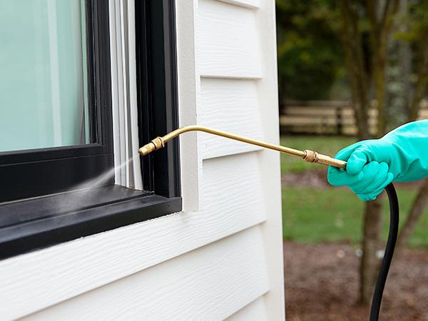 Image of a man spraying pest control around his windows