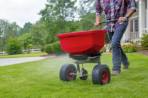Image of a man spreading granules on his lawn