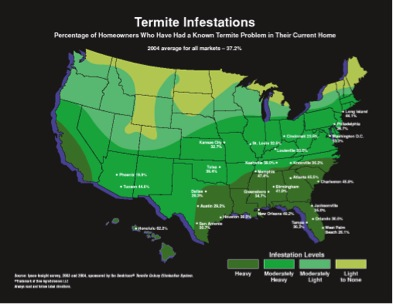 Termites All About Termites Facts Life Cycle Reproduction - Cockroach Us Map