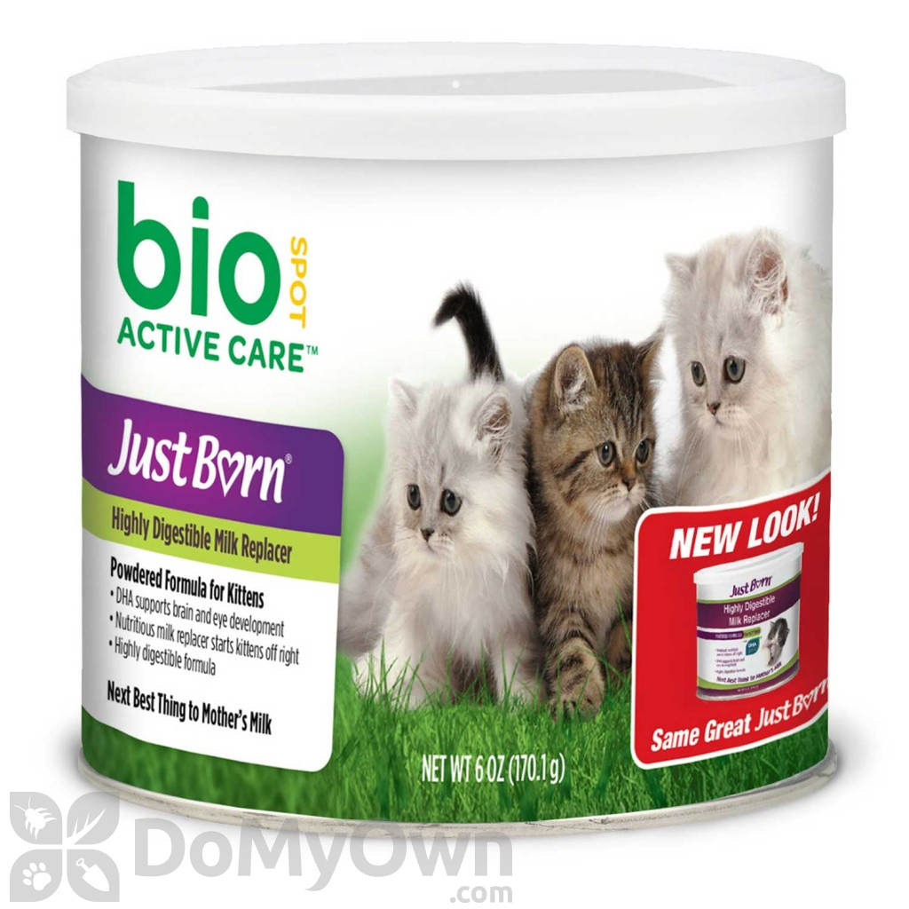fip in cats contagious
