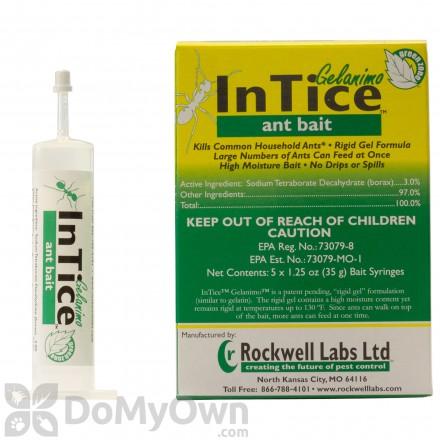 InTice Gelanimo Ant Bait - (5 x 35 g syringes)