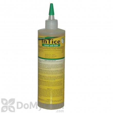 InTice Rover Ant Bait