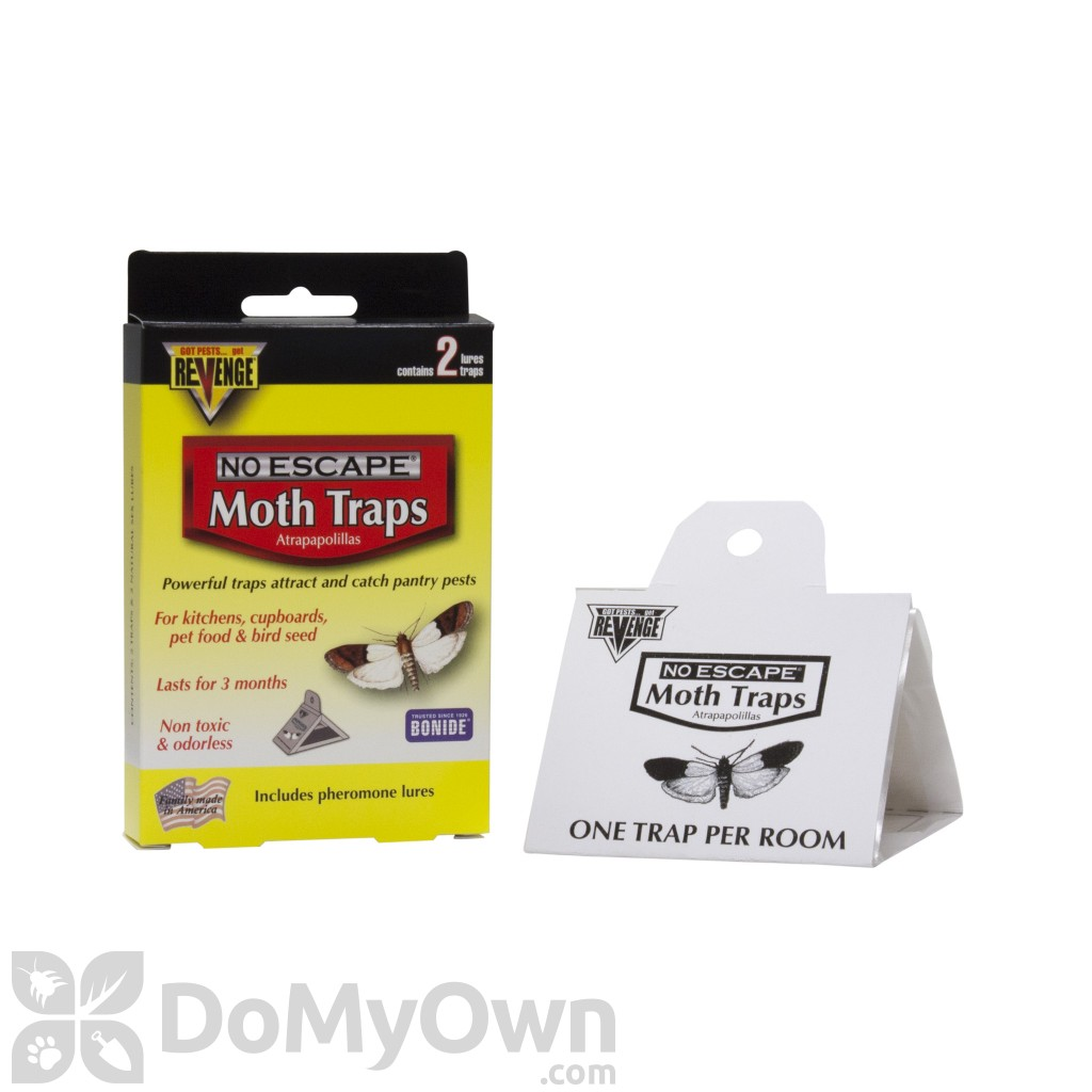 Revenge Pantry Pest Trap, meal moth, flour moth, raisin moth trap