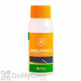 Koppert Miglyphus (Diglyphus isaea) 100 ml