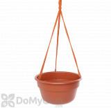 Bloem Dura Cotta Hanging Basket 12 in. Terra Cotta