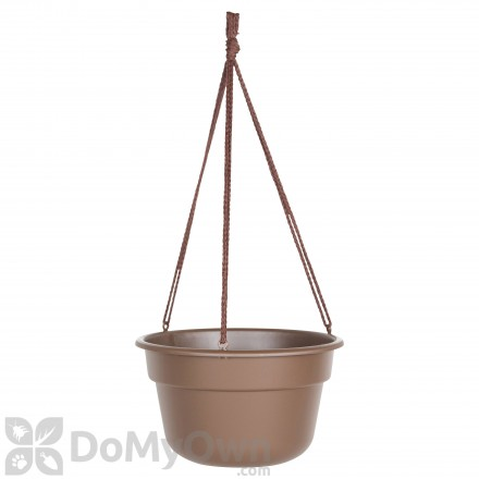 Bloem Dura Cotta Hanging Basket 12 in.