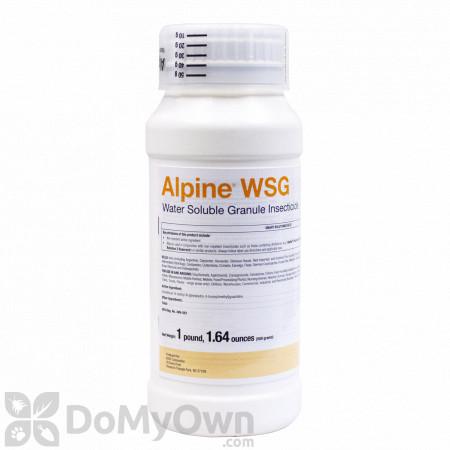 Alpine WSG 500g