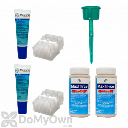 New York Outdoor Ant Kit