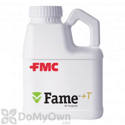 Fame +T SC Fungicide