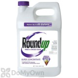 Roundup Weed & Grass Killer Super Concentrate 1 gal,