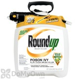 Roundup Ready-to-Use Poison Ivy Plus Tough Brush Killer in the Pump \'N Go 2 Sprayer