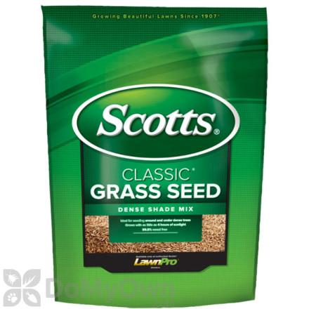 Scotts Classic Grass Seed Dense Shade Mix