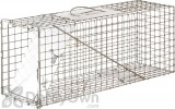 Little Giant Single Door Live Animal Trap 25 in.
