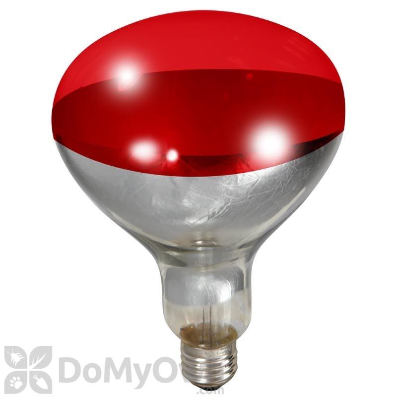 Little Giant Red Heat Lamp Bulb 250 Watt
