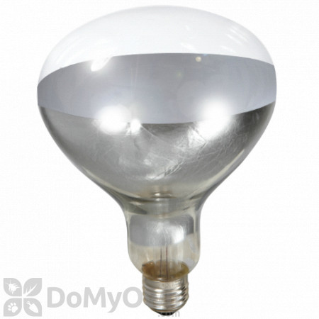 Little Giant Clear Heat Lamp Bulb 250 watt