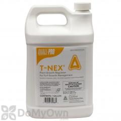 T-Nex
