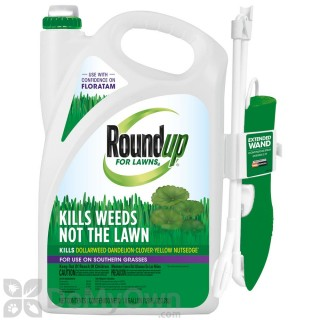 Quick View Roundup For Southern Lawns Ready To Use