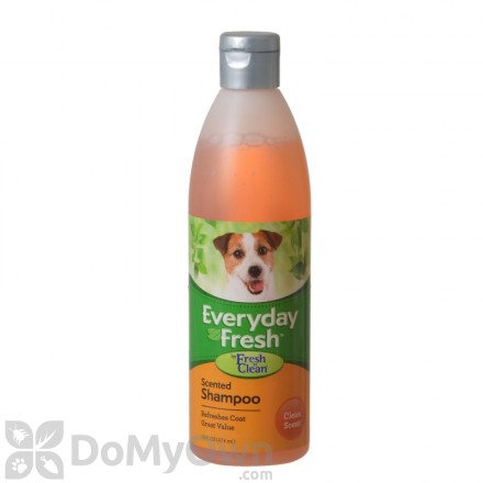 Everyday Fresh Scented Shampoo - Clean Scent