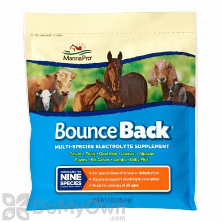 Manna Pro Bounce Back Electrolyte