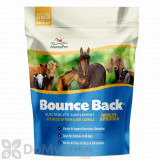 Manna Pro Bounce Back Electrolyte - 4 lb bag