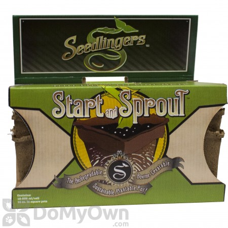 Messinas Seedlingers Start & Sprout Square Pot Small