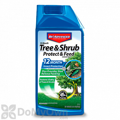 Bio Advanced 12 Month Tree and Shrub Protect and Feed II Concentrate