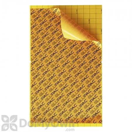 Flytrap Professional 80 Glupac Glue Boards (Yellow) GB011