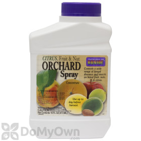 Bonide Citrus, Fruit and Nut Orchard Spray Concentrate