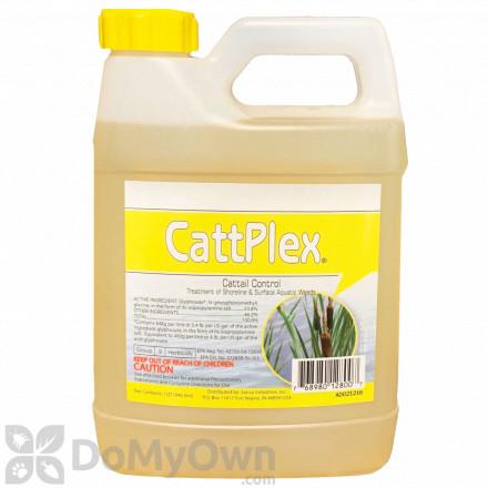 Catt Plex