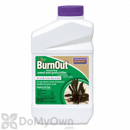 Bonide Burnout Concentrate