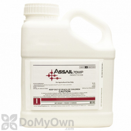 Assail 70WP Insecticide