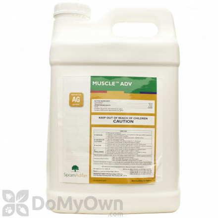 Muscle ADV Fungicide
