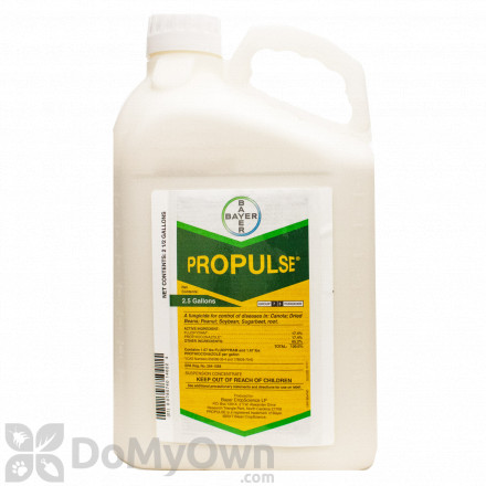 Fungicides for Turf & Lawns