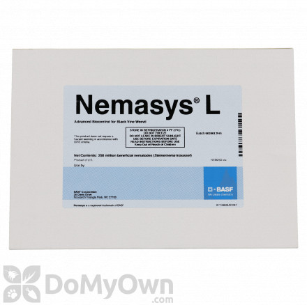 Nemasys L Beneficial Nematodes (500 million nematodes)