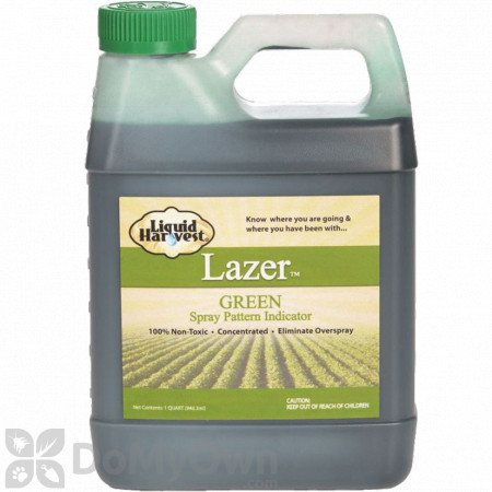 Lazer Spray Pattern Indicator - Green
