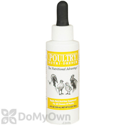 Poultry Nutri - Drench