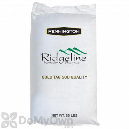 Pennington Ridgeline Kentucky Bluegrass Gold Tag