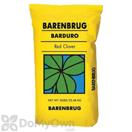 Barenbrug Barduro Red Clover with Yellow Jacket