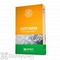 ENTONEM - Live Nematodes (Steinernema feltiae)