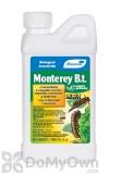 Monterey B.t. - CASE (12 pints)